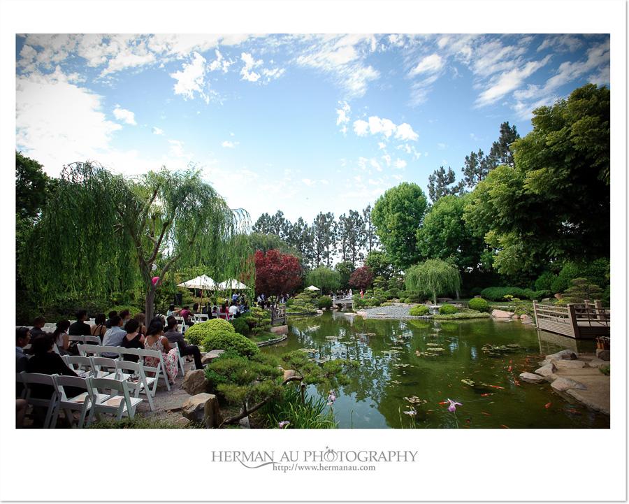 Wedding mike tiffany earl burns miller japanese for Csulb japanese garden koi pond
