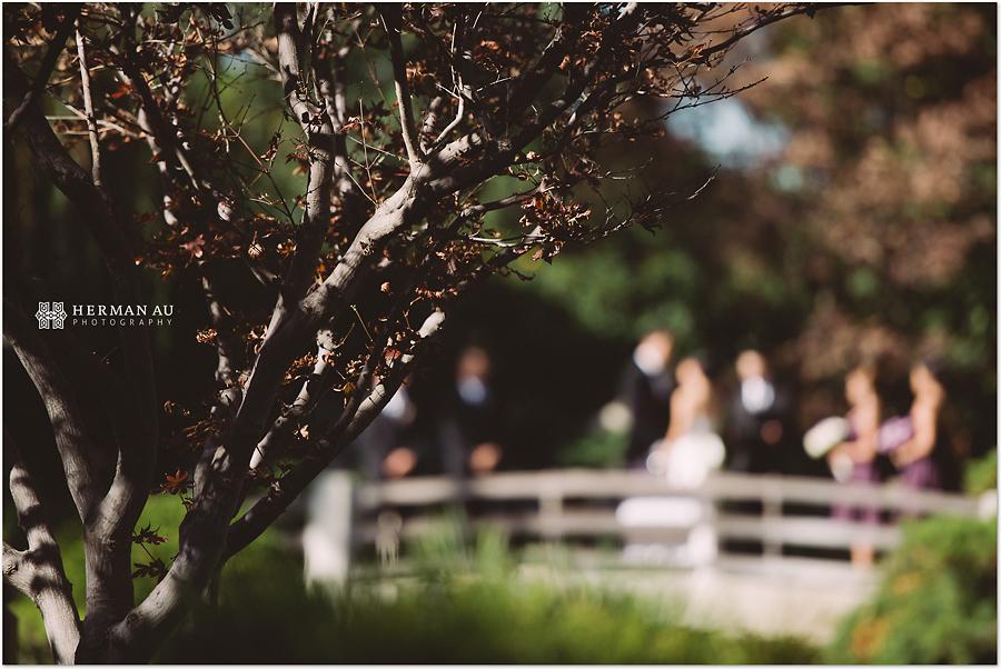 Muoy & Dave wedding bridge ceremony