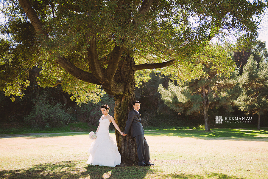 Michelle & William California Country Club bridal portrait solo tree on golf course