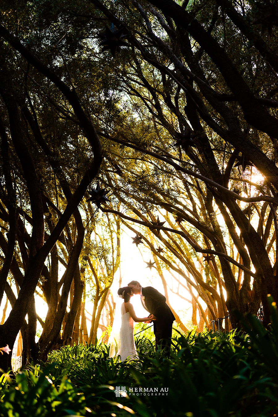 21.Padua Hills Theatre couple wedding bridal portrait forest trees stars