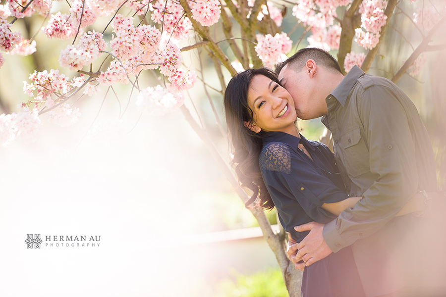 south pasadena engagement cherry blossom