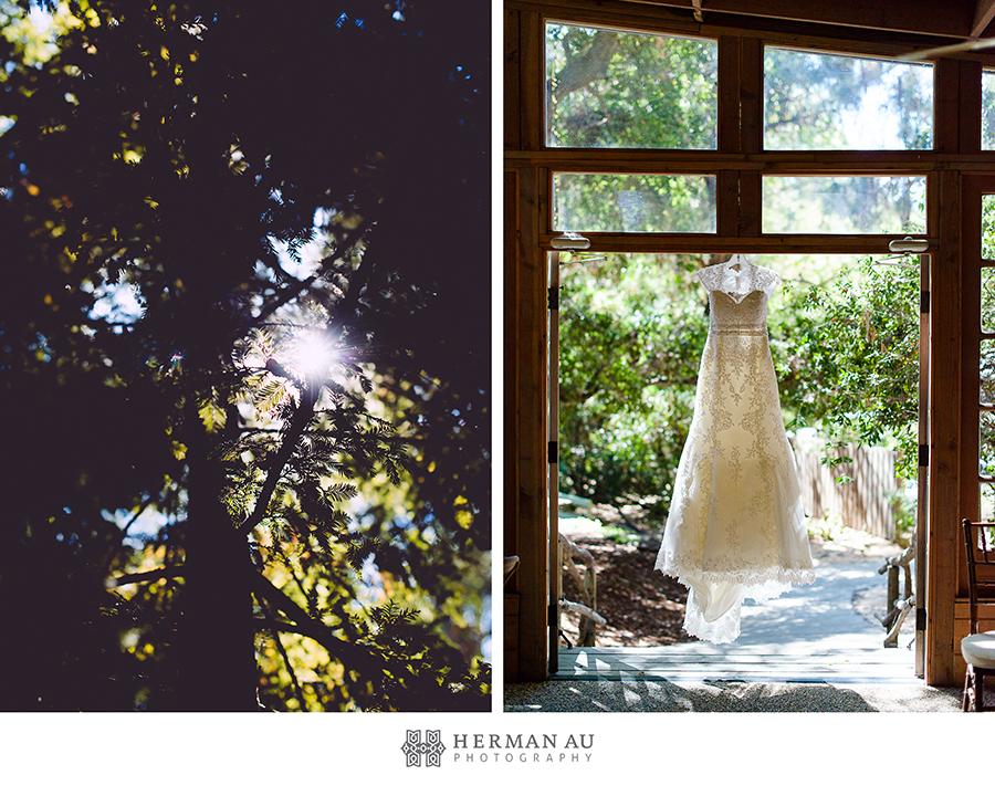 1 wedding gown